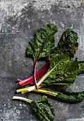 Various different coloured chard leaves