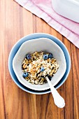 Homemade vegan nut muesli with blueberries
