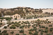 A view of the Mount of Olives with the Church of All Nations, Jerusalem, Israel