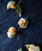 Several physalis