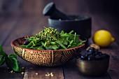 Bohnensalat mit Babyspinat, Oliven & Zitronenpesto (Low Carb)