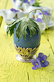 Dried delphinium leaf on top of Easter egg in egg cup