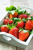Erdbeeren in einem weissen Holztablett