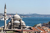 A view of Istanbul with a mosque, Turkey
