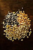 A pile of various corn kernels (seen from above)