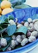 White mulberries with a twig