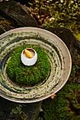 Landei mit gretockneten Morcheln und Felchen-Kaviar von Heinrich Schneider Koch und Inhaber Restaurant Auener Hof, Südtirol, Italien