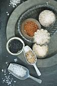 Verschiedene Salzsorten (Draufsicht)