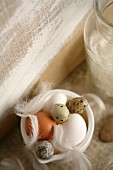 Hens' eggs, quail's eggs and feathers