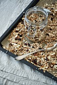 Muesli with coconut, cranberries, oats, almonds and puffed amaranth on a baking tray