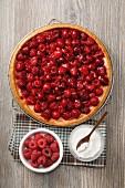 Raspberry tart seen from above