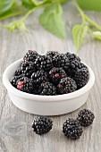 Blackberries in small bowl