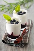 Yoghurt cream with blueberries