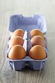 Sechs Eier im Eierkarton