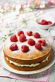 Victoria Sandwich Cake with raspberries