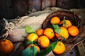 Mandarinen mit Blättern im Korb auf rustikalem Holzuntergrund