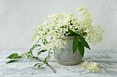 Elderflowers in old bundt cake tin