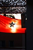 The Moroccan flag, Marrakesh