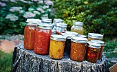 Preserving jars of tomatoes and relishes on a tree stump in a garden