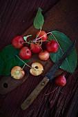 Holzäpfel mit Blättern