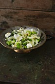 Fennel and bean seed salad with feta cheese
