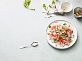 Vegetarian melon carpaccio with radishes (Paleo diet)