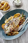 Trout with fennel and lemons
