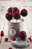 Cake pops with raspberries in a metal tin