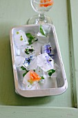 Edible flowers in ice cubes in a metal dish