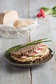 Vollkornbrot mit gereiftem Cashew-Schnittkäse & Radieschen (vegan)