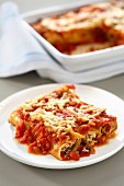 Chorizo-Ricotta-Canelloni