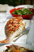 Baked Whole Fish with tomatoes & olives