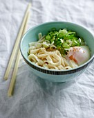 Udon noodles with an onsen egg and spring onions