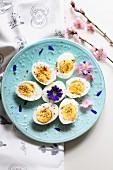 Hartgekochte Eier und Frühlingsblumen auf hellblauem Teller