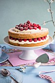Sponge cake with raspberries