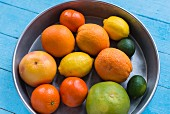 Various citrus fruits in a metal bowl