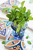 A bunch of peppermint in a glass vase on Moroccan ceramic tiles