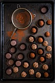 Various chocolate truffles with a sieve and cocoa powder on a baking tray