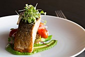 Grilled salmon with rocket purée and a tomato and sweet corn salad