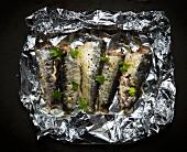 Sardinen mit Koriander auf Alufolie zum Grillen (Aufsicht)