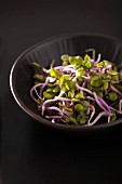 A bowl of China rose sprouts