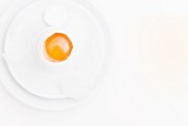 A raw egg on a white plate on a white surface