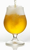 A beer being poured into a Pils glass