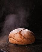Brot dämpfen