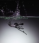A spoon in water with a splash