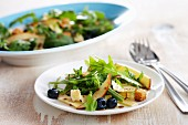 Rocket salad with smoked cheese and blueberries and croutons