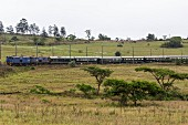 The luxury train Rovos Rail on the journey from Durban to Pretoria (South Africa)