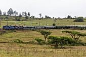 Luxuszug Rovos Rail auf der Fahrt von Pretoria nach Durban (Südafrika)