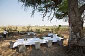 Gedckter Esstisch im Freien auf einer Lodge, Afrika