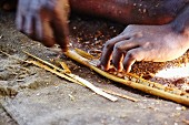 Cinnamon sticks being made (Sri Lanka)